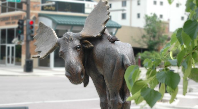 Ralph The Moose - Mankato, MN Sculputure Walk 2018